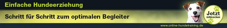 Banner Online-Hundetraining